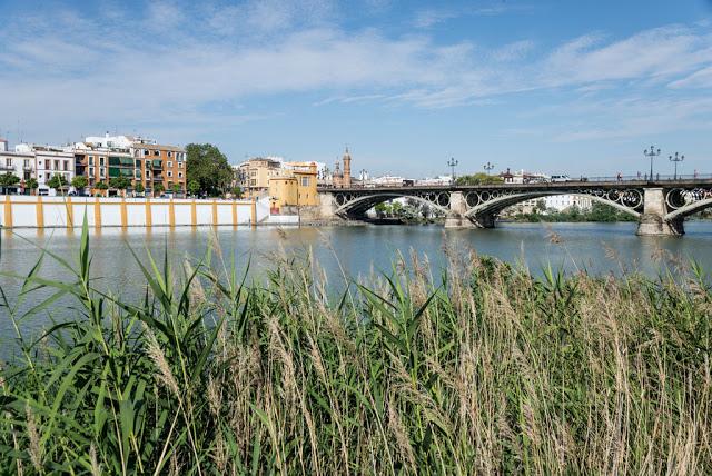 Siviglia, la Cattedrale e la Giralda