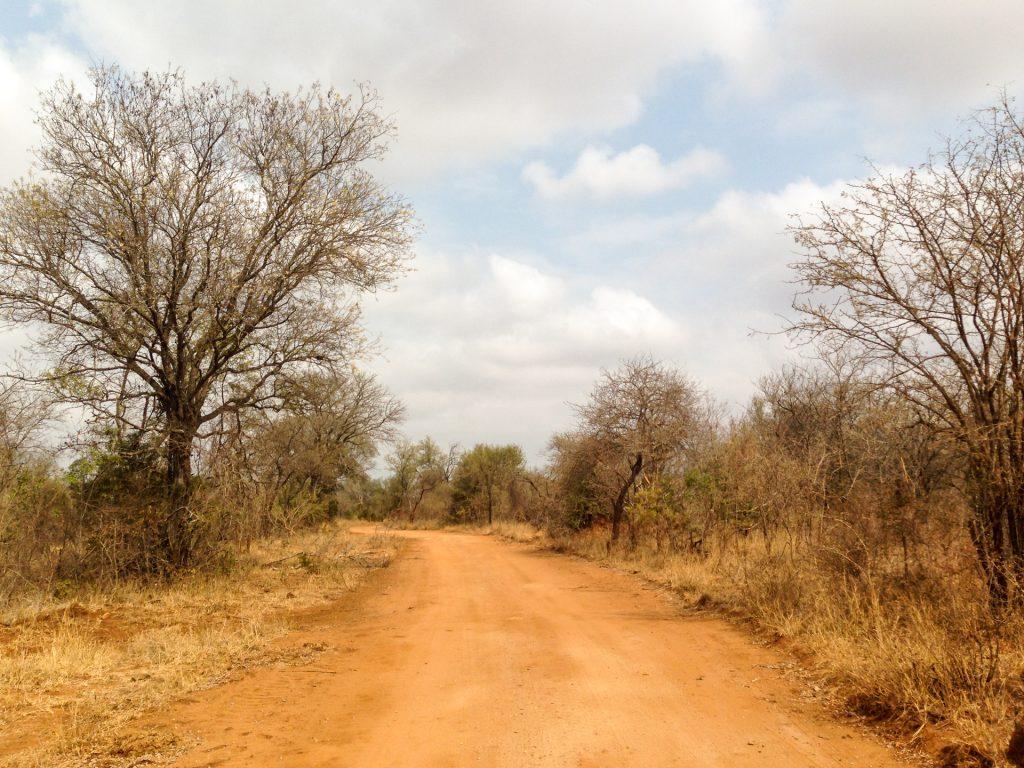Safari al Karongwe Game Reserve
