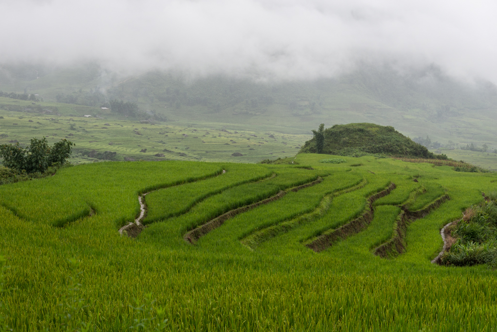 Sapa, l'estremo Nord del Vietnam