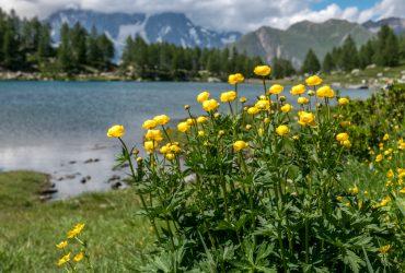 VALLE D'AOSTA – Escursione al Lago d'Arpy