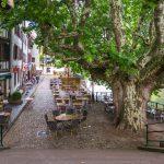 Strasburgo, Au petit bois vert