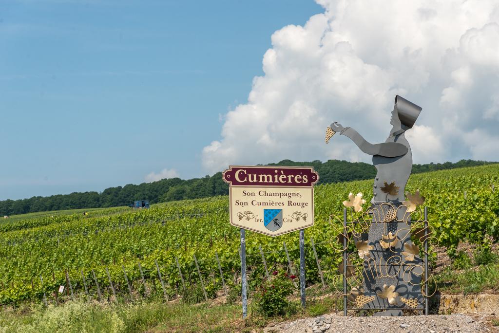 Reims & la Route de Champagne