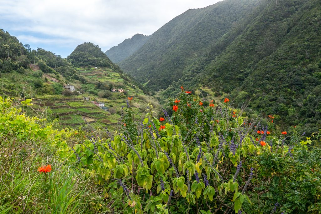 Trekking, Madeira
