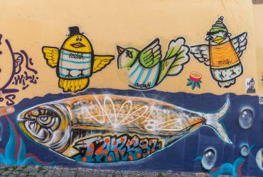 Porto, Street art & Murales – dove trovarli