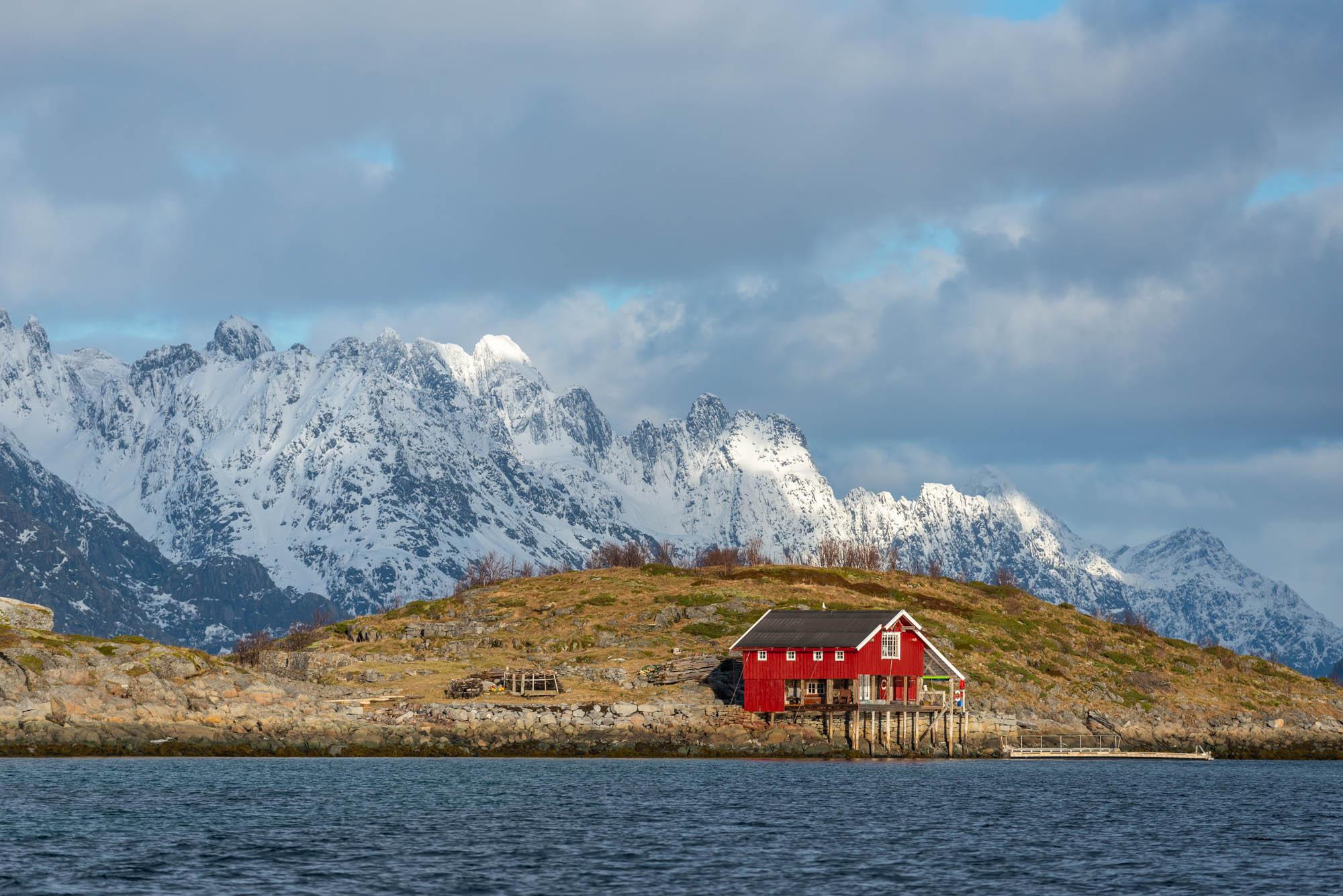 Norvegia, a caccia di aquile di mare & merluzzi