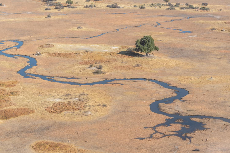 Botswana, in viaggio nella terra degli elefanti