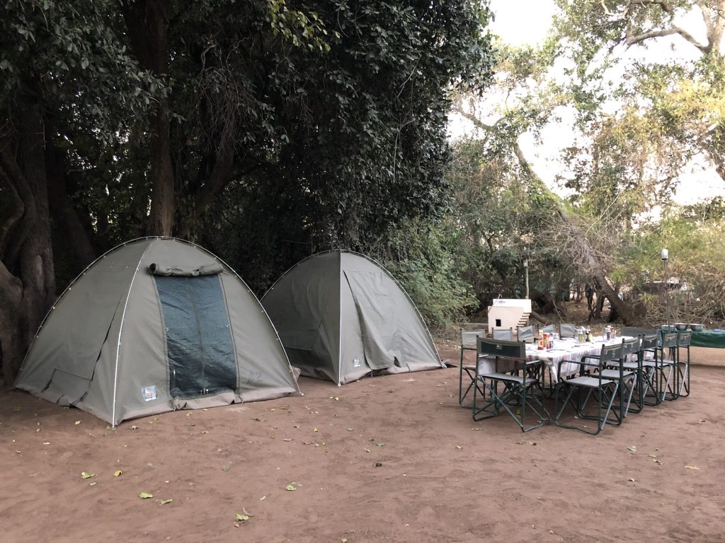 Camping, Chobe River Front