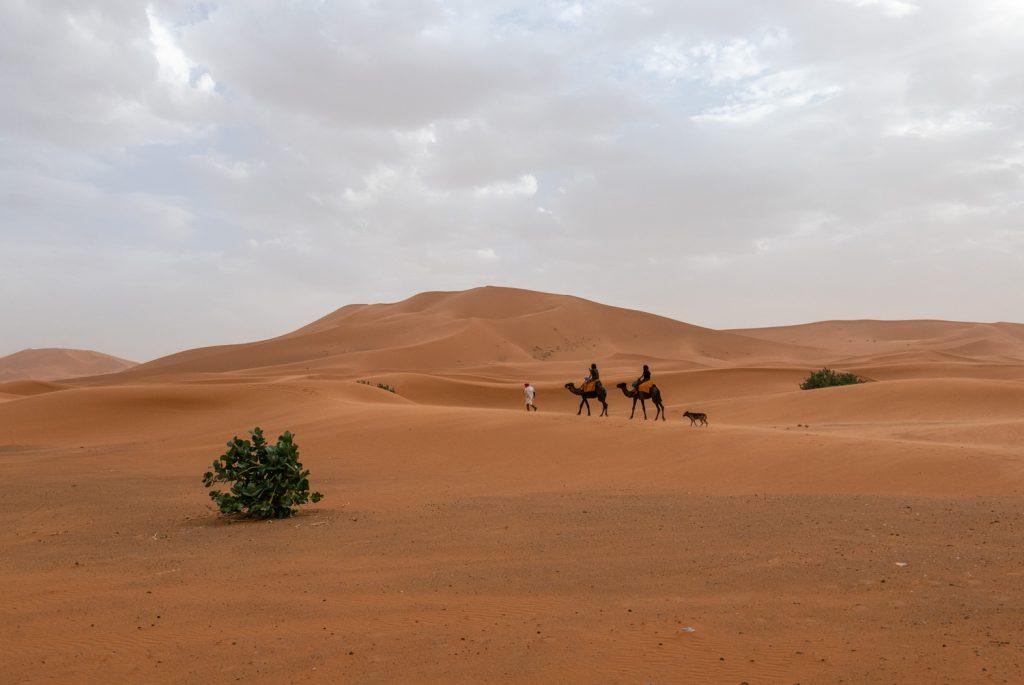 Marocco, deserto Erg Chebbi