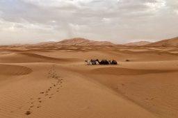 Marocco, dormire una notte tra le dune di Erg Chebbi