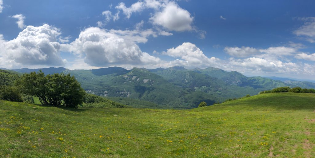 Monte Navert
