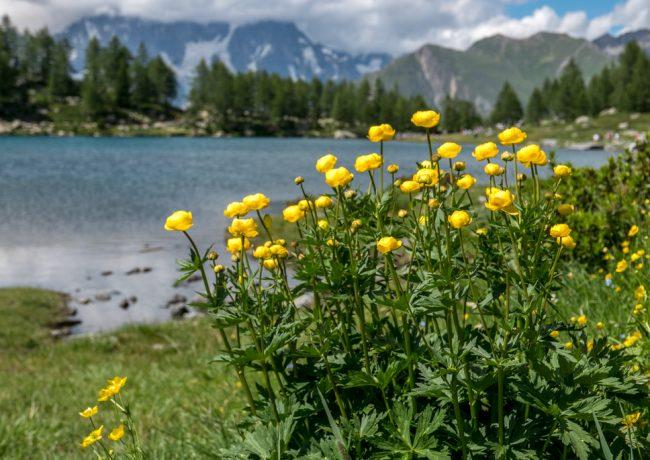 Alla scoperta della Valle d'Aosta – cosa fare e cosa vedere