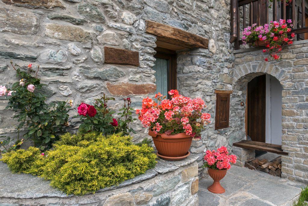 Valle d'Aosta, Chamois