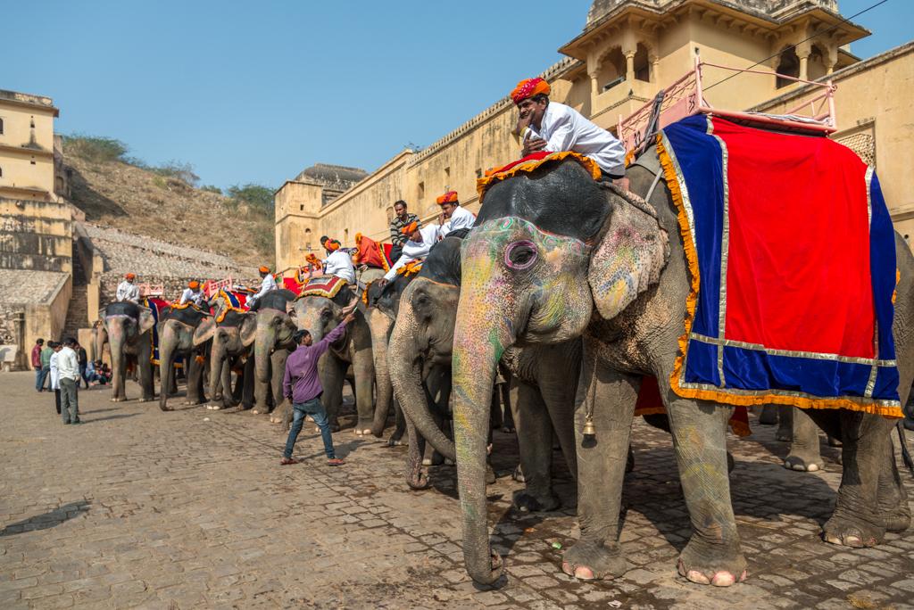 India – Visita dei forti & templi di Jaipur