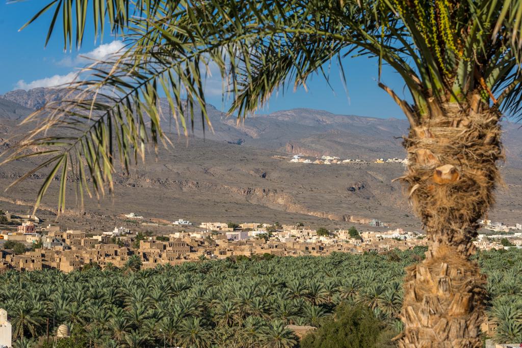 Itinerario in Oman – Forte di Jabreen e la Jabel Shams