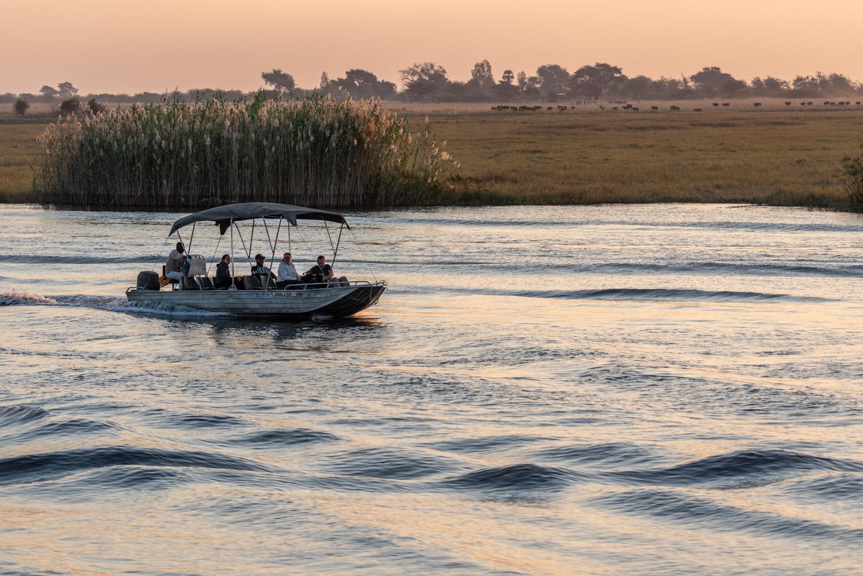 Botswana, safari al Parco Nazionale Chobe