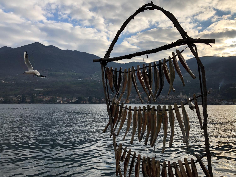 Trekking a Montisola, alla scoperta del Lago d'Iseo