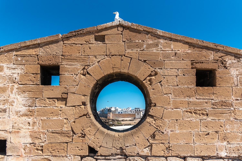 Viaggio in Marocco, cosa vedere a Essaouira in 1 giorno